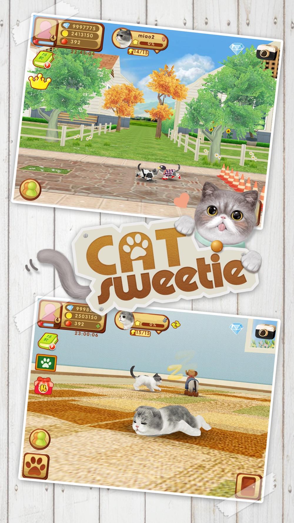 Cat Sweetie Cheat Codes