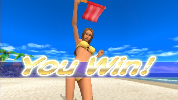 Beach Flag Paradise screenshot-4