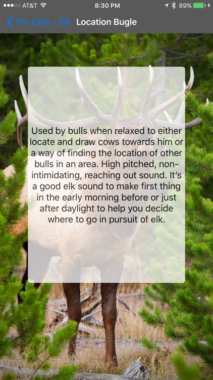 Pro Calls - Elk Calls
