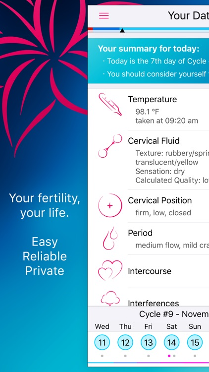 Lily - Your Personal Fertility Calculator