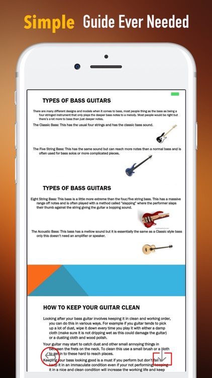 Bass Guitar for Beginners-Learning Tips and Guide screenshot-1