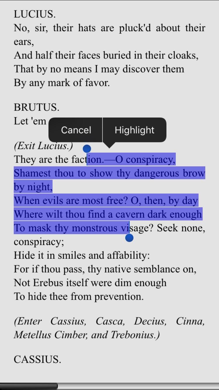 Ebook Reader Screenshot