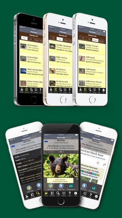 Florida Mammals – Guide to Common Species screenshot-3