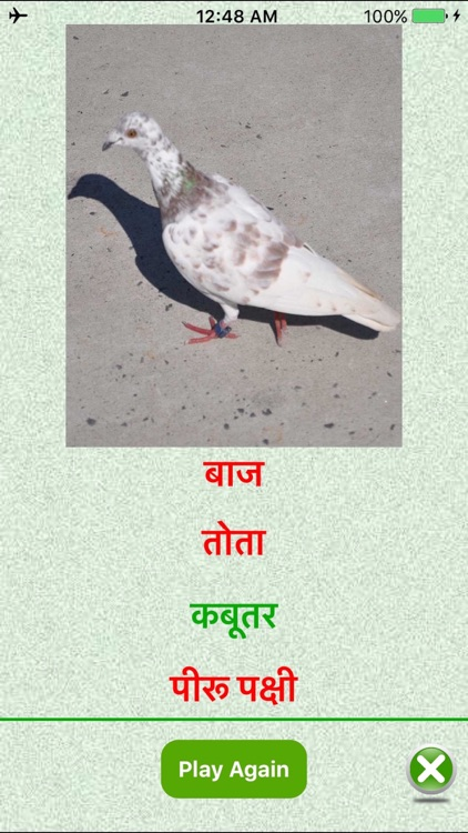 Flashcards Hindi Lesson screenshot-4