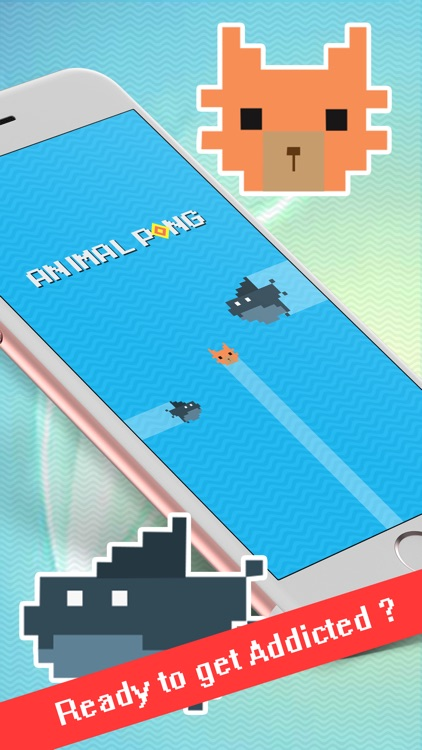 Animal-Pong screenshot-0