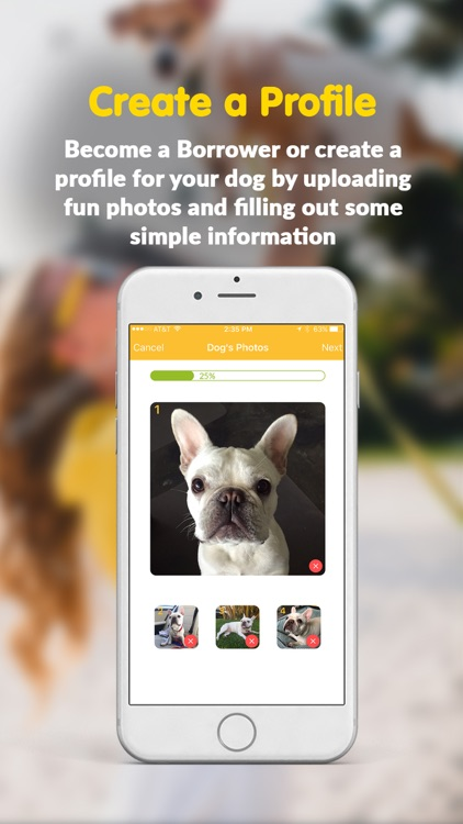Bark N Borrow – Dog Sitting, Walks & Home Boarding screenshot-1