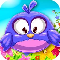 Birds Wonderland Adventure