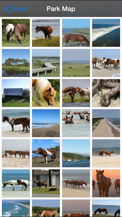 Assateague Island National Park screenshot-4