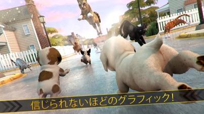 かわいい 犬 ねこ 大戦争 - シティ 子犬 白猫 ラッシュ紹介画像2