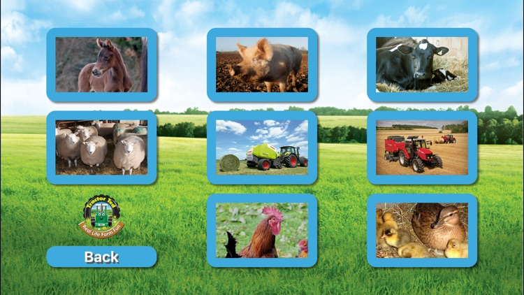 Tractor Ted - Farm Fun 1 screenshot-3
