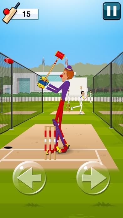 Stick Cricket 2-4