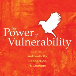 Quick Wisdom from The Power of Vulnerability