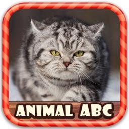Animal Figure ABC