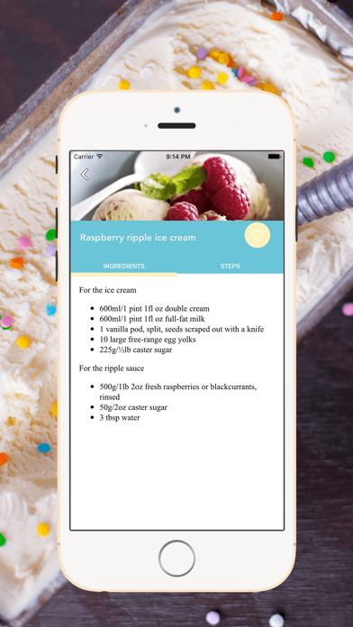 Homemade Ice Cream Recipes screenshot two