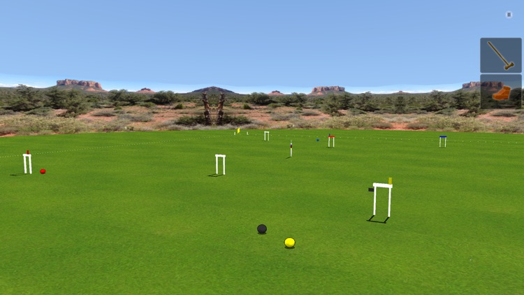 Croquet Pro 2 screenshot-0