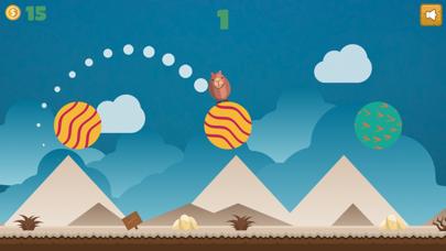 Jumping Desert Animal Challenge: Flipping for Fun! screenshot four