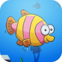 Boy Fishing - Fish Daily Catch