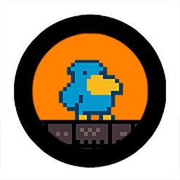 Run Birdman Run