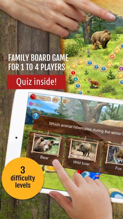 Forest Quest: board game for kids, family, school