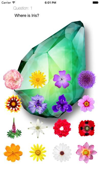 Floral Quiz Touch 2 screenshot 1