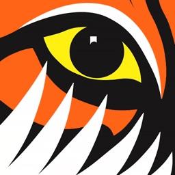 TigerTurf.TV