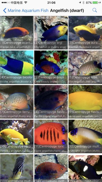 Marine Aquarium Fish screenshot-3