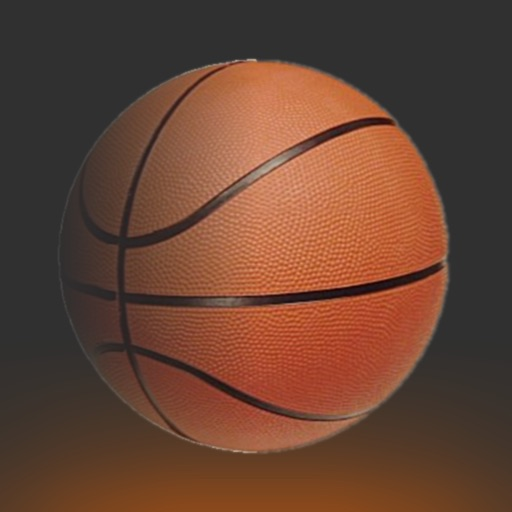 Basketball Game HD