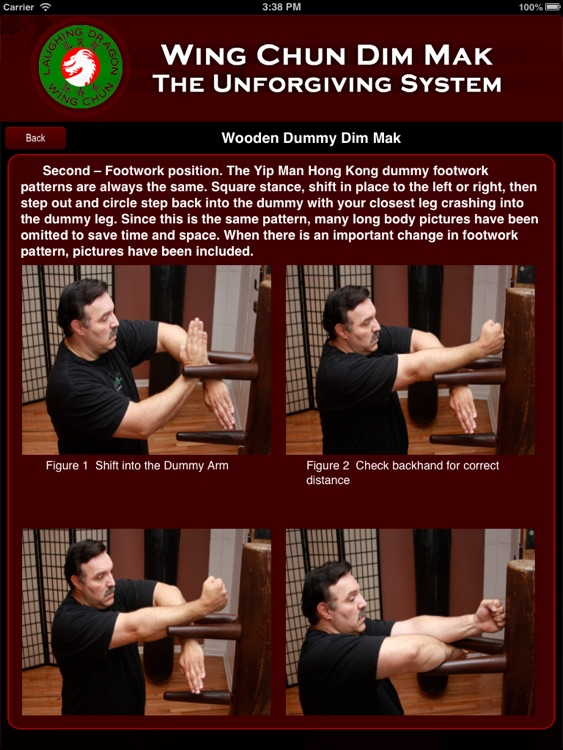 Wing Chun Dim Mak screenshot-3
