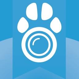 Cam2Pet – Dog Monitor & Pet Camera