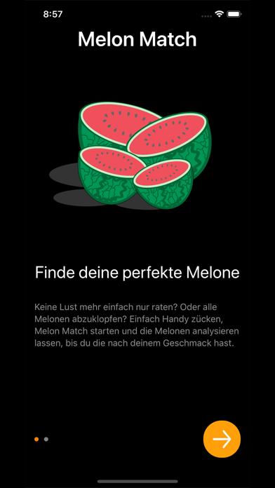Melon MatchScreenshot von 3