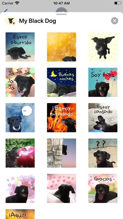 My Black Dog screenshot 3