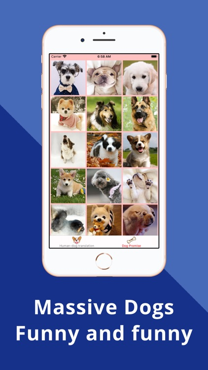 Dog whistle app translator