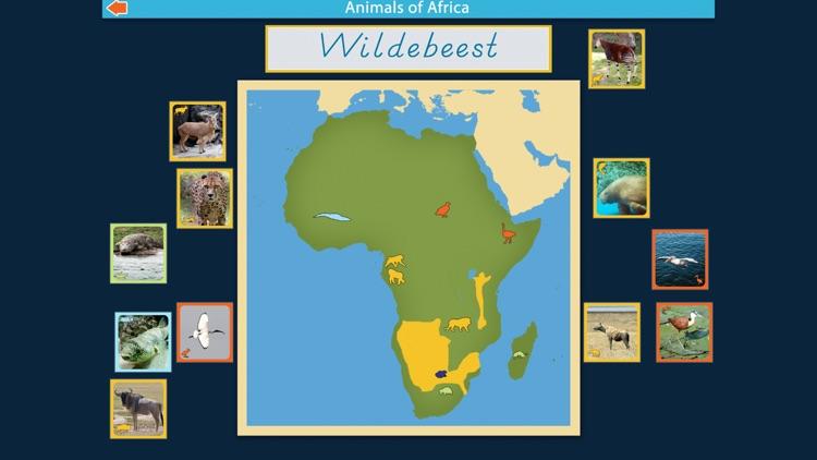 Montessori Animals of Africa screenshot-3