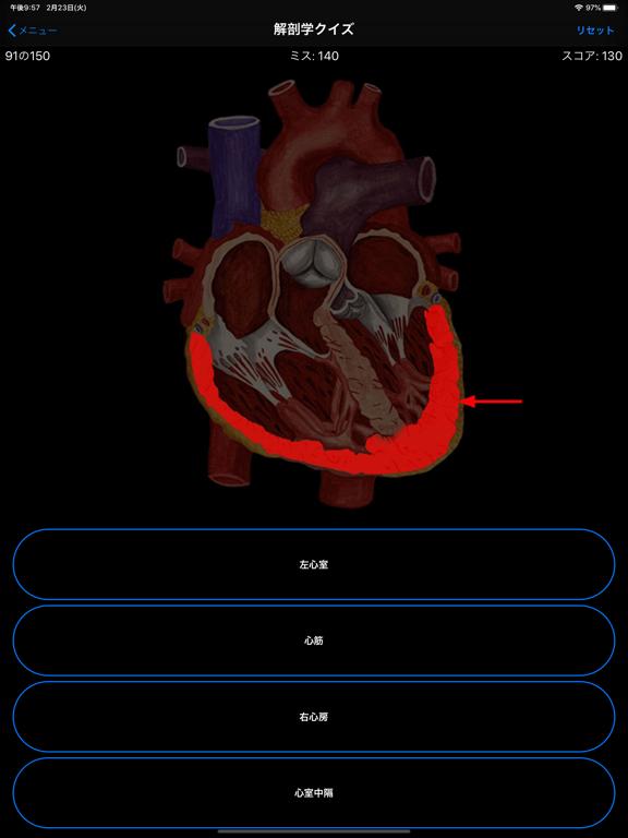 解剖学クイズのおすすめ画像2