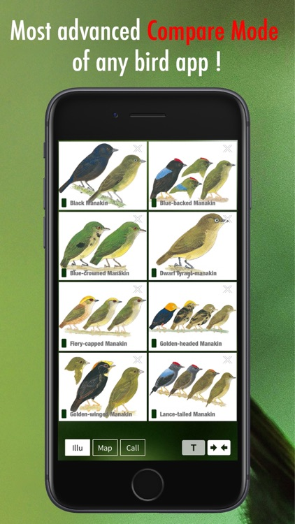 All Birds Venezuela - guide screenshot-6