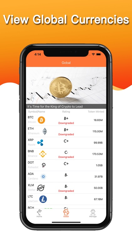 Big Winner - Crypto Alert