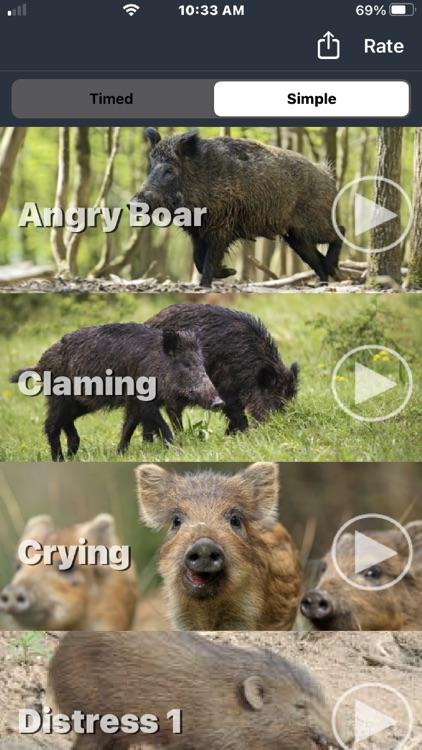 Wild Hog Calls