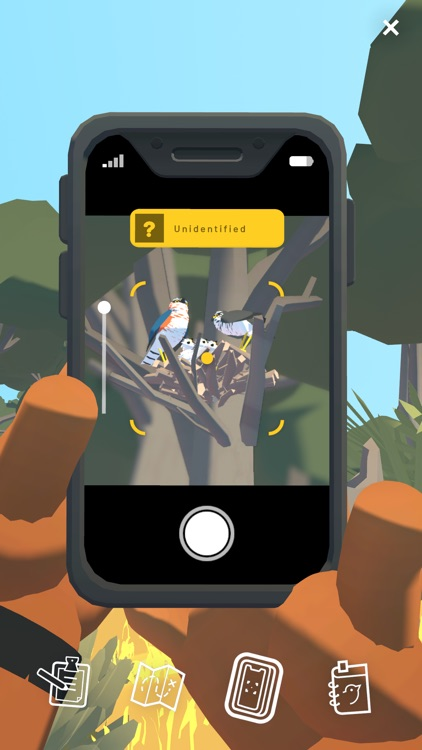 Alba: A Wildlife Adventure screenshot-3
