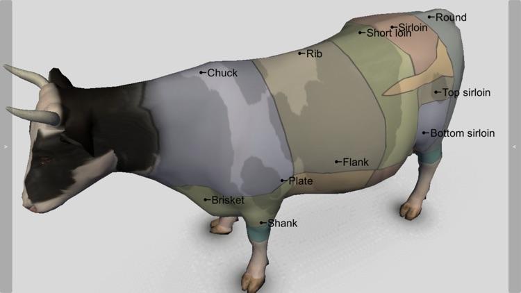 3D Bovine Anatomy screenshot-3