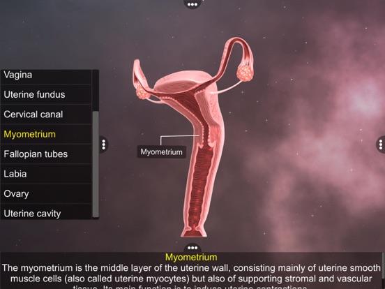 Human Reproductive System screenshot 14
