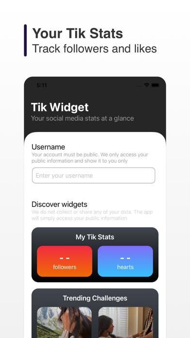 Tik Widget screenshot 1