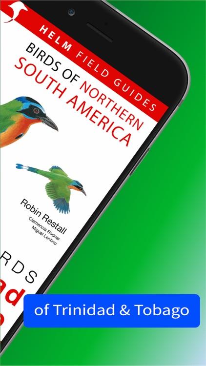 All Birds Trinidad and Tobago