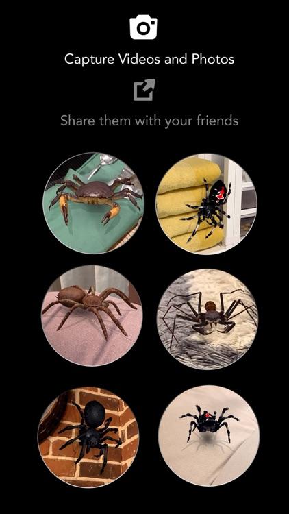 AR Spiders & Co: Scare friends screenshot-5