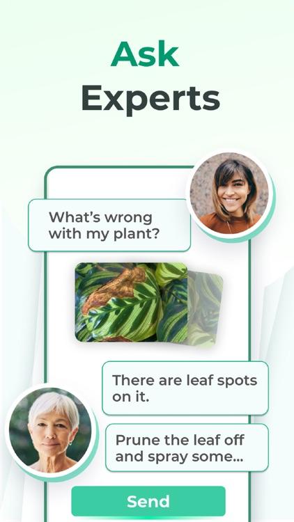 PictureThis - Plant Identifier screenshot-3