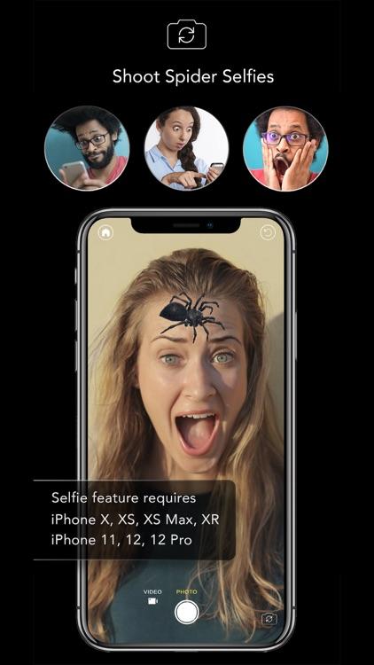 AR Spiders & Co: Scare friends screenshot-0