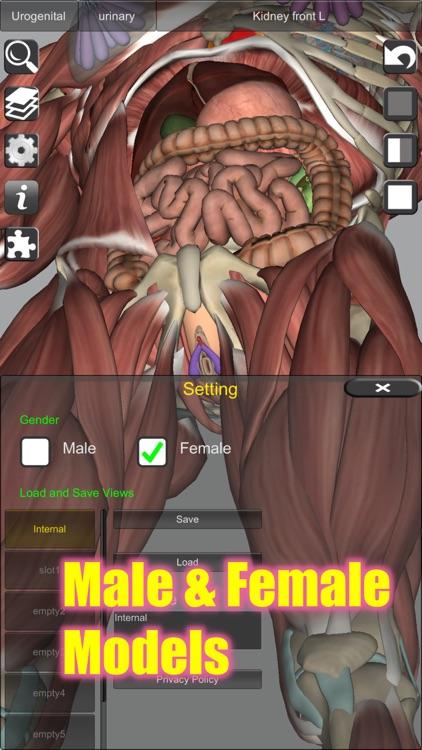 3D Anatomy Learning screenshot-6