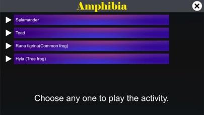 Diversity in Living: Amphibia screenshot 2