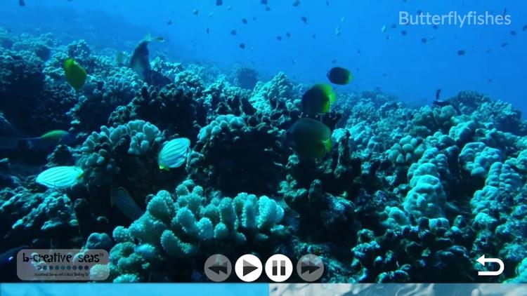 Marine Life Learning screenshot-3
