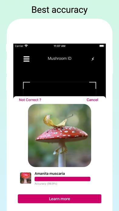 Mushroom Identifier - Fungi Id screenshot 3