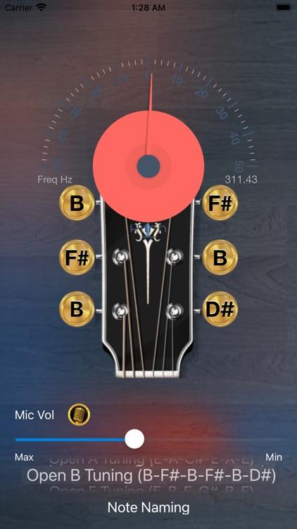Guitar Tuning Tuner Lite